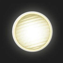 316L Stainless Steel Par56 LED Pool Light AC/DC12V  65W IP68 Under Water Pool Bulb Outdoor Pool supplier