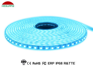 China IP68 waterproof DC24V 5M RGB Led Strip light, muti color underwater decorate led pool light strip factory